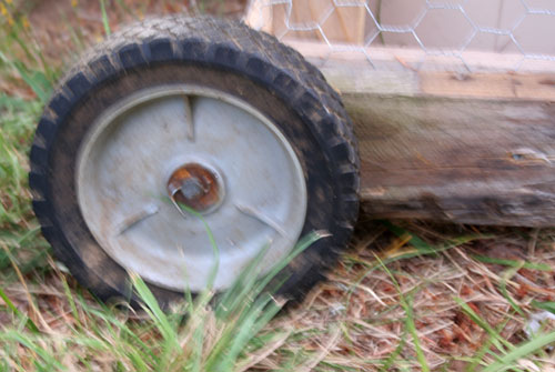 chicken_tractor-wheel_lowered