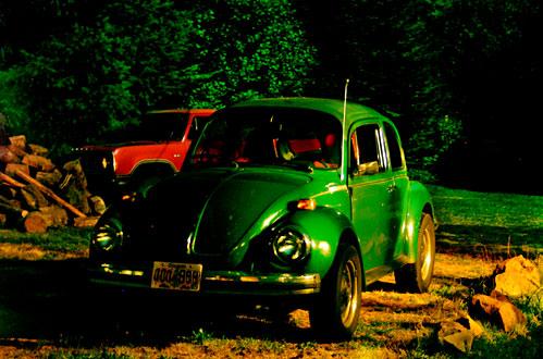 Teri's beetle at night